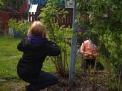 Gardening club May 2014
